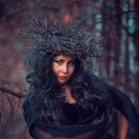 Вечер в лесу :: Сергей