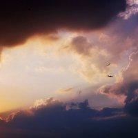 Небо на двоих :: Татьяна Кейси Зубкова