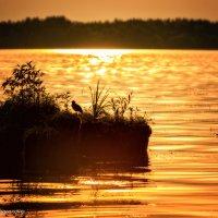 Островок на закате :: Наталия Горюнова