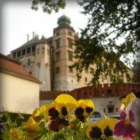 Вавельский замок :: Galina Belugina