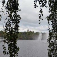 Холодное лето Оулу :: Ольга