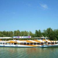 Прогулочный теплоход на реке Дон :: татьяна