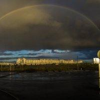 после дождя :: Елена Маковоз