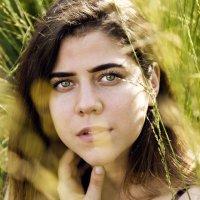 Девушка в колосках :: Вероника Князева