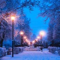 зиме близко :: Artem Mihko