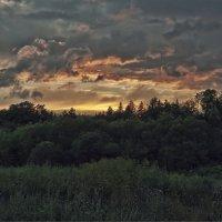 Закат над лесом. :: Сергей Калиновский