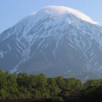 У подножия Авачинского вулкана :: Дмитрий Солоненко