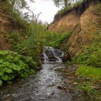 Холодная горная река, Кузнецкий Алатау :: Владимир Деньгуб