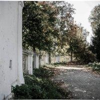 старый парк :: Екатерина Липинская