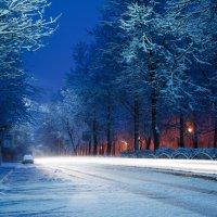 Воспоминания о зиме :: Artem Mihko