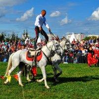 Соло на лошадях :: Анатолий Колосов