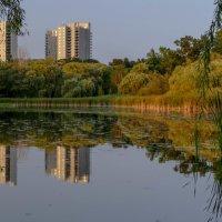 В гармонии с дикой природой (окраина Торонто, Канада) :: Юрий Поляков