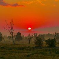 Восход солнца. :: Георгий