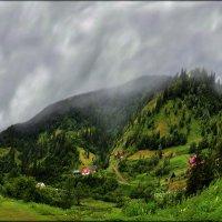 В Карпатах дожди... :: Юрий Гординский