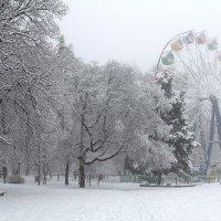 Парк в снегу :: Анатолий Шулков