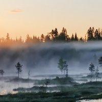 Панорама Карельских болот :: Альберт Беляев
