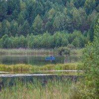 Одинокий рыбак :: Анна Вязникова