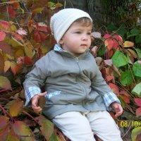 Осенний портрет :: Светлана Казмина