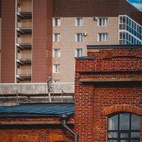 два дома, две эпохи :: Наталья Новикова