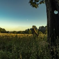 Окно в Осень... :: Александр Ковальчук