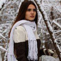 Зимние портреты :: Алексей Щетинщиков