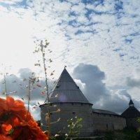 Староладожская крепость :: Lera Morozova