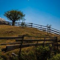 хутор на пути в Комови,северная Черногория :: Олег Семенов
