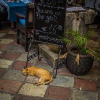 не проходите мимо! Креветка на гриле - всего по 16 евро 50 центов! ))) :: Олег Семенов