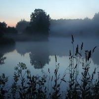 Туман :: Ольга Анянова