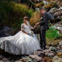 Свадьба :: Геннадий Никулочкин