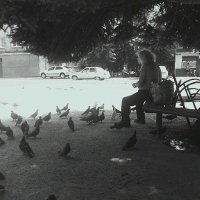 Человек и голуби :: Юлия Закопайло