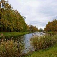 Осень на Нижних прудах... :: Sergey Gordoff