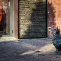 вход с собаками запрещён :: Станислав Пономарчук