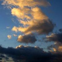 Позолотило солнце облака :: Татьяна Смоляниченко