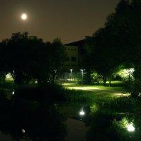 ночь в городе. При свете луны :: elena manas