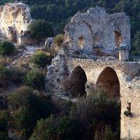 Монфор  — замок крестоносцев, в Верхней Галилее на севере Израиля :: vasya-starik Старик
