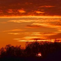 В сто сорок солнц закат пылал.... :: Елена Михайлова .