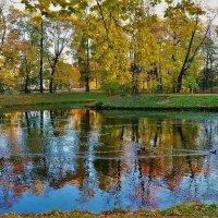 """Осень на пруду""""Озерки""""... :: Sergey Gordoff"""