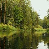 Вода :: Надежда Крылова