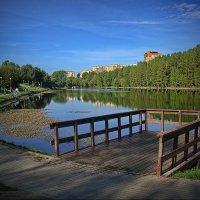 Пионерский пруд. :: Александр Бабаев