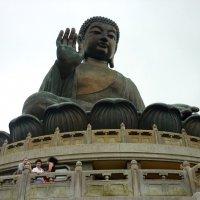 Большой Будда :: Елена