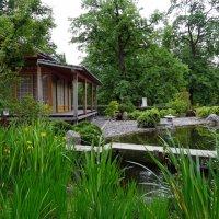 В ботаническом саду :: Наталия Короткова