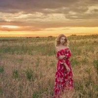 Летнее поле :: Женя Рыжов