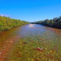 Река Мурино :: Анатолий Иргл