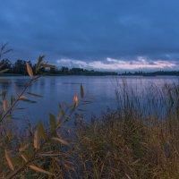 Утро на Лебяжьем озере. :: Виктор Евстратов