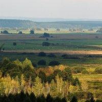 Долина реки Жиздра :: Роман Воронцов