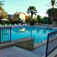 Тунис утро у басейна :: Александр