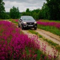 мой авто :: Валерий Гудков
