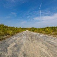 мраморная дорога :: Владимир Родионов