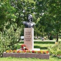 Памятник Салавату Юлаеву :: Елена Павлова (Смолова)